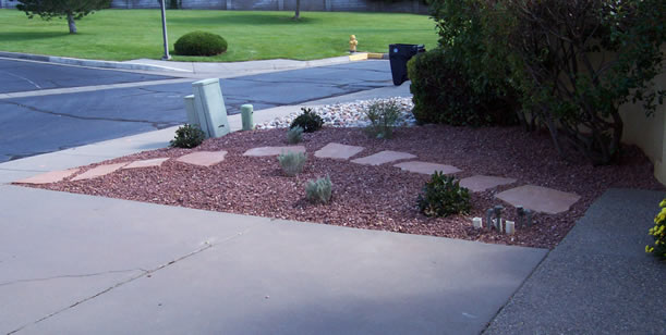 Professionally Xeriscaped Front Yard