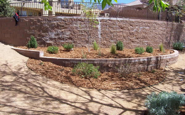 Beautifully Xeriscaped Backyard