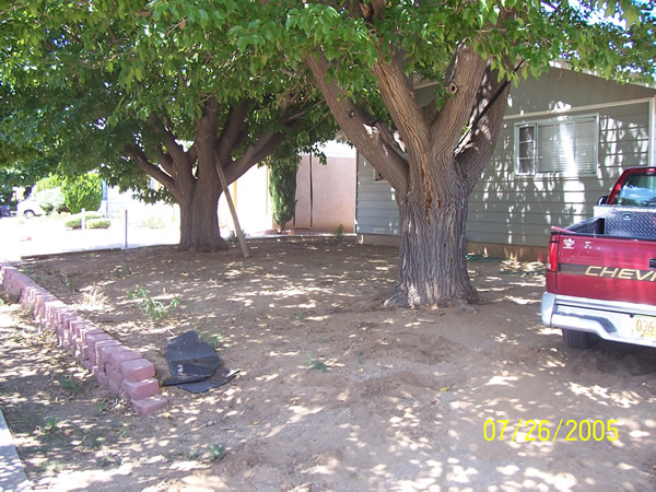 Non-Landscaping Front Yard