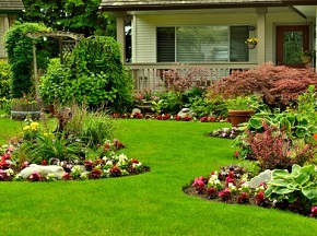 Landscape Contracting Company